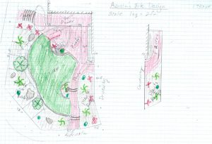 Design sketch mapping out a turf area in a front yard