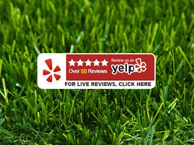 Yelp - For Live Reviews Click Here